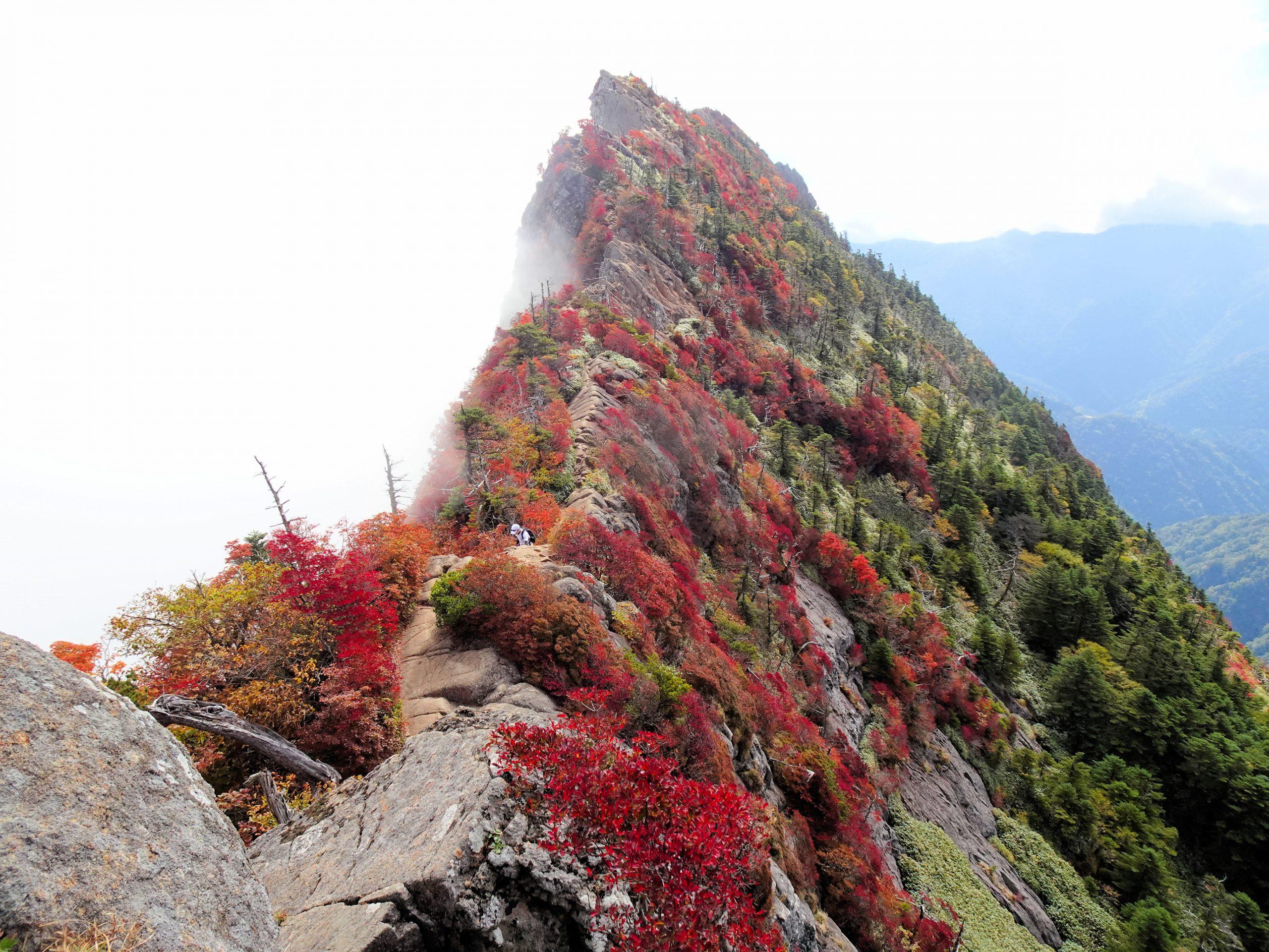 石鎚山の紅葉を堪能してきました。